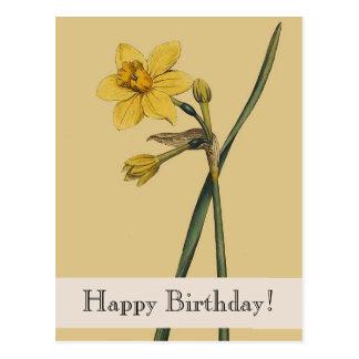 Cartão botânico do feliz aniversario do Daffodil Cartão Postal