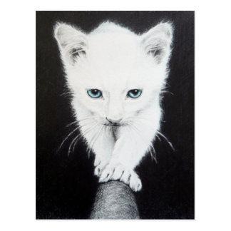 Cartão branco bonito da arte do lápis do gatinho