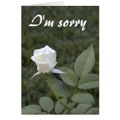 Cartão branco da desculpa do rosebud