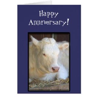 Cartão branco da vaca do aniversário feliz