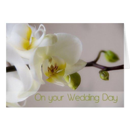 Cartão branco das felicitações do casamento da orq