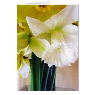 Cartão branco do Daffodil