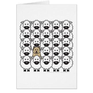 Cartão Briard nos carneiros