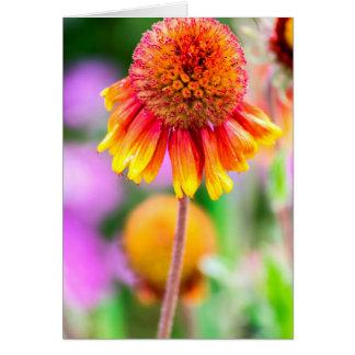 Cartão brilhantemente colorido da flor