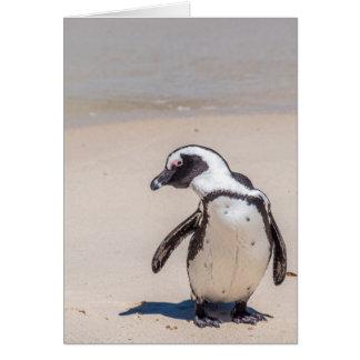 Cartão brincalhão do pinguim
