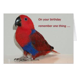 Cartão Brinquedos da mastigação do aniversário
