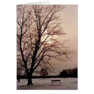 Cartão Búfalo do parque de Delaware da árvore de amor,