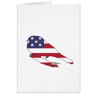 """Cartão Bullfinch """"bandeira americana """""""