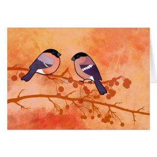 Cartão Bullfinch (pyrrhula do Pyrrhula)