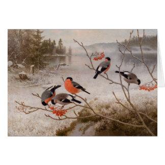 Cartão Bullfinches na paisagem CC0967 Von Wright do