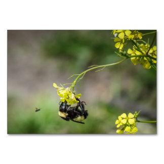 Cartão Bumble a abelha