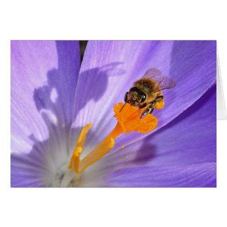 Cartão Bumble a abelha na foto roxa do vazio da flor