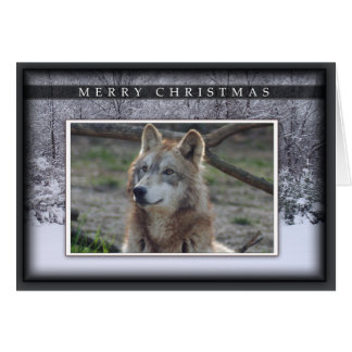 Cartão c-2011-grey-wolf-020