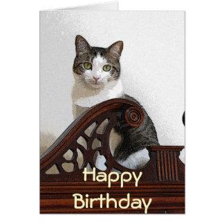 Cartão CA gatinho do aniversário