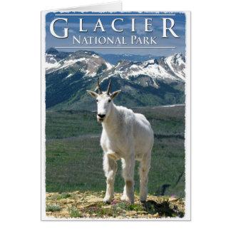 Cartão Cabra de montanha no parque nacional de geleira