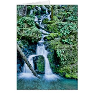 Cartão Cachoeira da angra da catarata