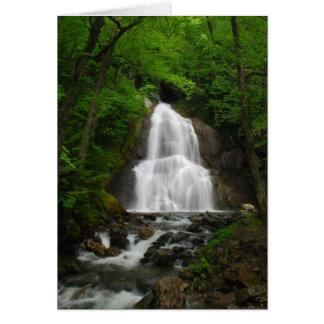 Cartão Cachoeira da primavera