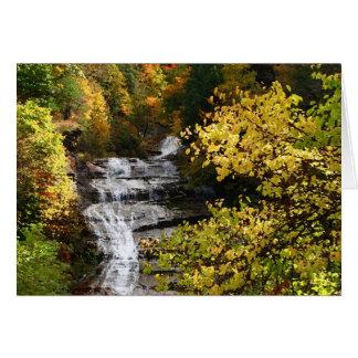 Cartão Cachoeira do outono