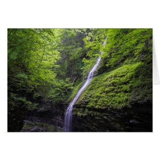 Cartão Cachoeira no vale de Watkins, NY