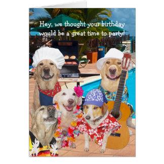 Cartão Cães engraçados customizáveis/laboratórios pelo