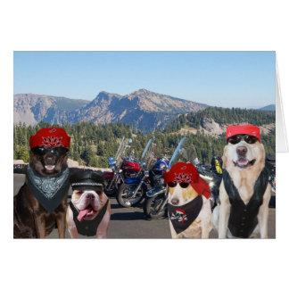 Cartão Cães engraçados do motociclista em um aniversário
