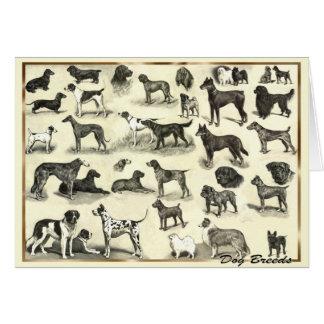 Cartão Cães - raças do cão para o cão canino dos amantes