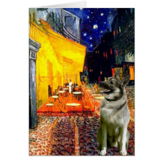 Cartão Café do terraço - norueguês Elkhound