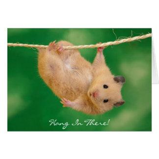 Cartão Cair dentro lá! Hamster