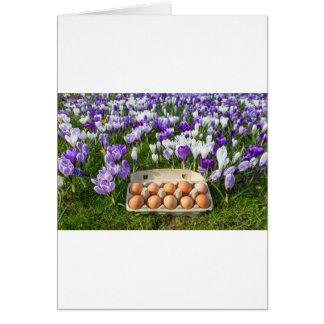 Cartão Caixa de ovo com os ovos da galinha nos açafrões
