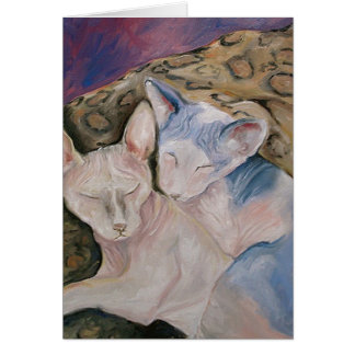 Cartão calvo do gato do gatinho da esfinge
