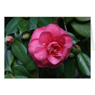 """Cartão """"Camélia cor-de-rosa # 1"""""""