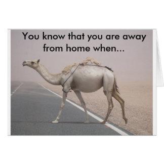Cartão Camelo c