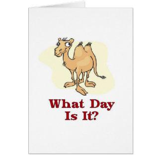Cartão Camelo - que dia é ele?