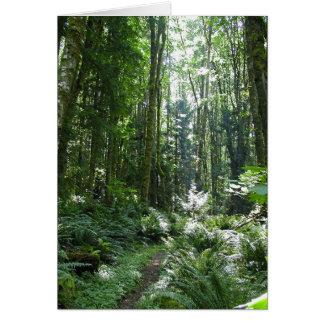 Cartão Caminhada da floresta