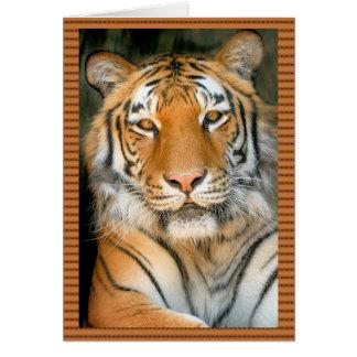 Cartão Caminhada no lado selvagem - tigre