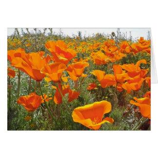Cartão Campo alaranjado da papoila das flores