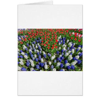 Cartão Campo de flores com as tulipas azuis e os jacintos