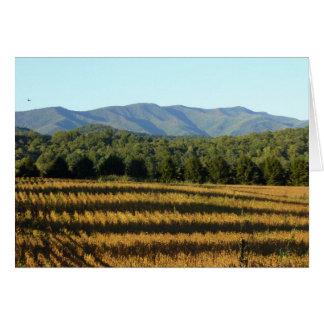 Cartão Campo de milho