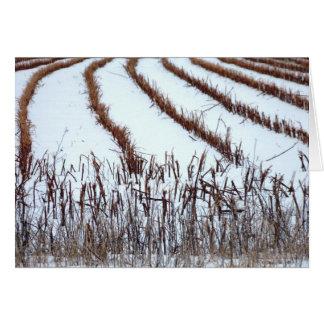 Cartão Campo do inverno