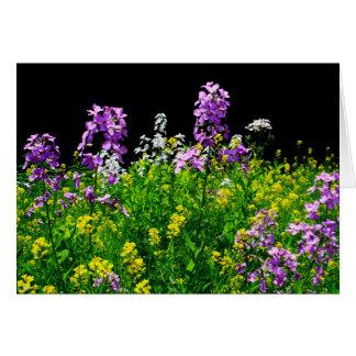 Cartão [Campo do Wildflower das flores coloridas] -