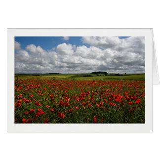 Cartão Campo vermelho da papoila de Dorset