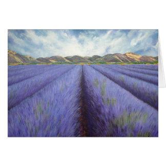 Cartão Campos da lavanda, Provence
