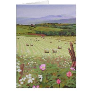 Cartão Campos de Scotland