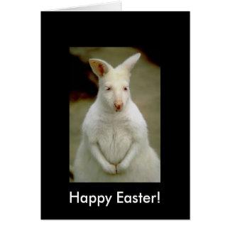 Cartão Canguru branco bonito adorável do albino