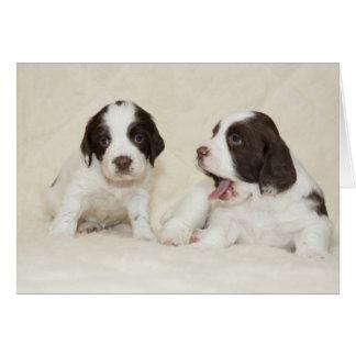 Cartão cansado dos filhotes de cachorro