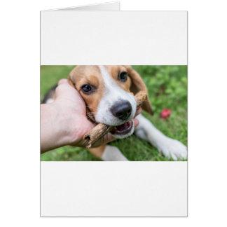 Cartão Cão com vara