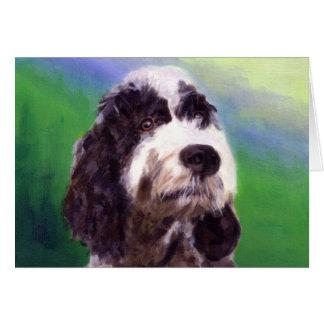 Cartão Cão de água português