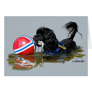 Cartão Cão de água português 2 com bola da bóia