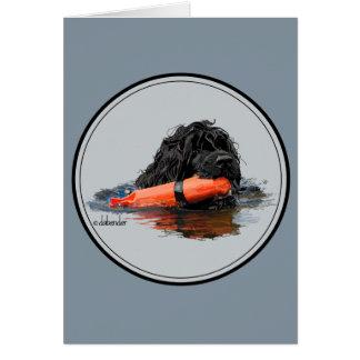 Cartão Cão de água português com pára-choque alaranjado