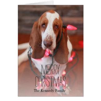 Cartão cão de basset, Natal, luzes de Natal